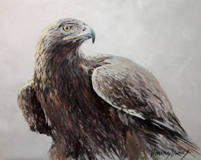 Aguila real 22x27